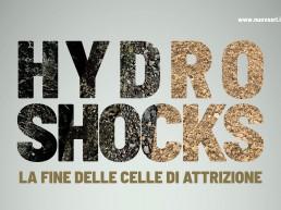 Hydro-shocks adv half